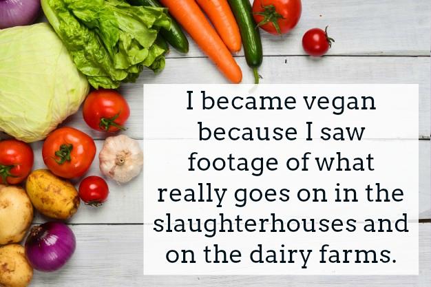 Vegan Quotes Text Image Quotes QuoteReel New Vegan Quotes