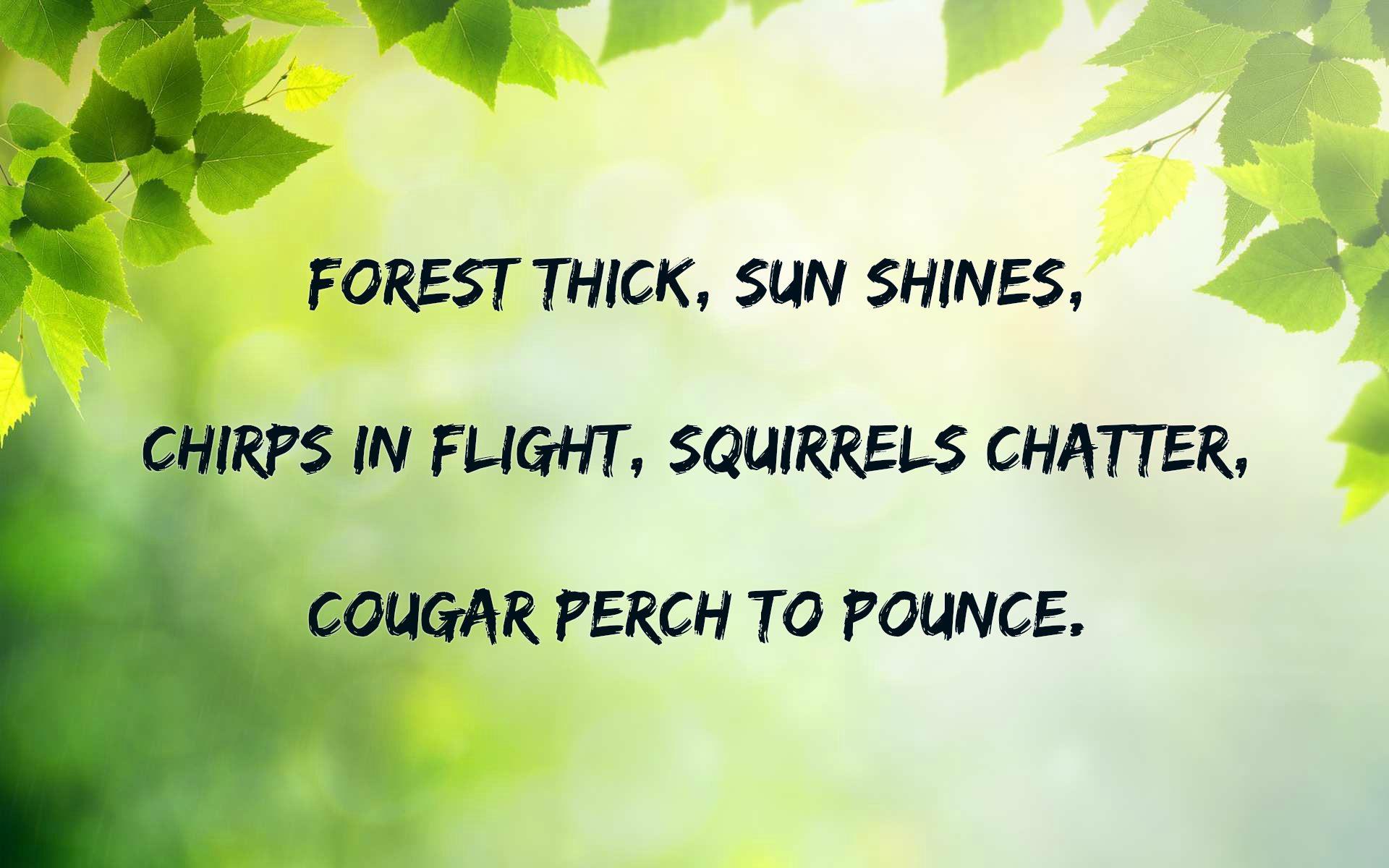 Haiku About Nature