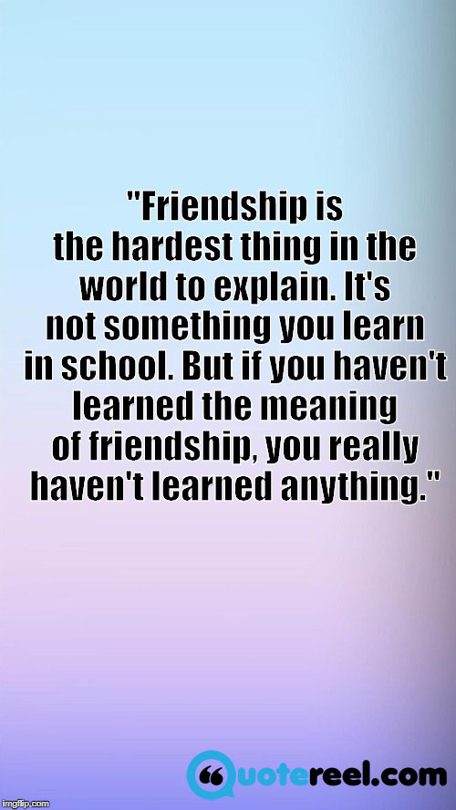 """Friendship is the hardest thing in the world to explain. It's not something you learn in school. But if you haven't learned the meaning of friendship, you really haven't learned anything."""