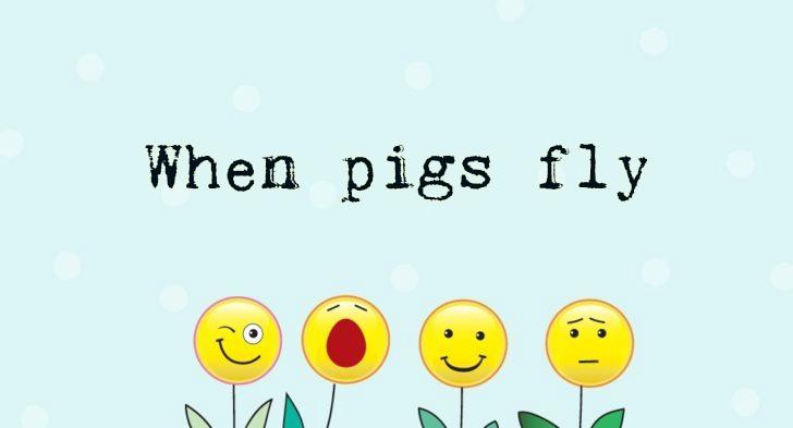 Funny Idioms
