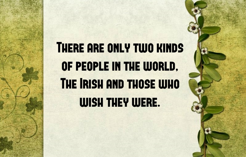10 Funny St Patricks Day Quotes To Share In 2018