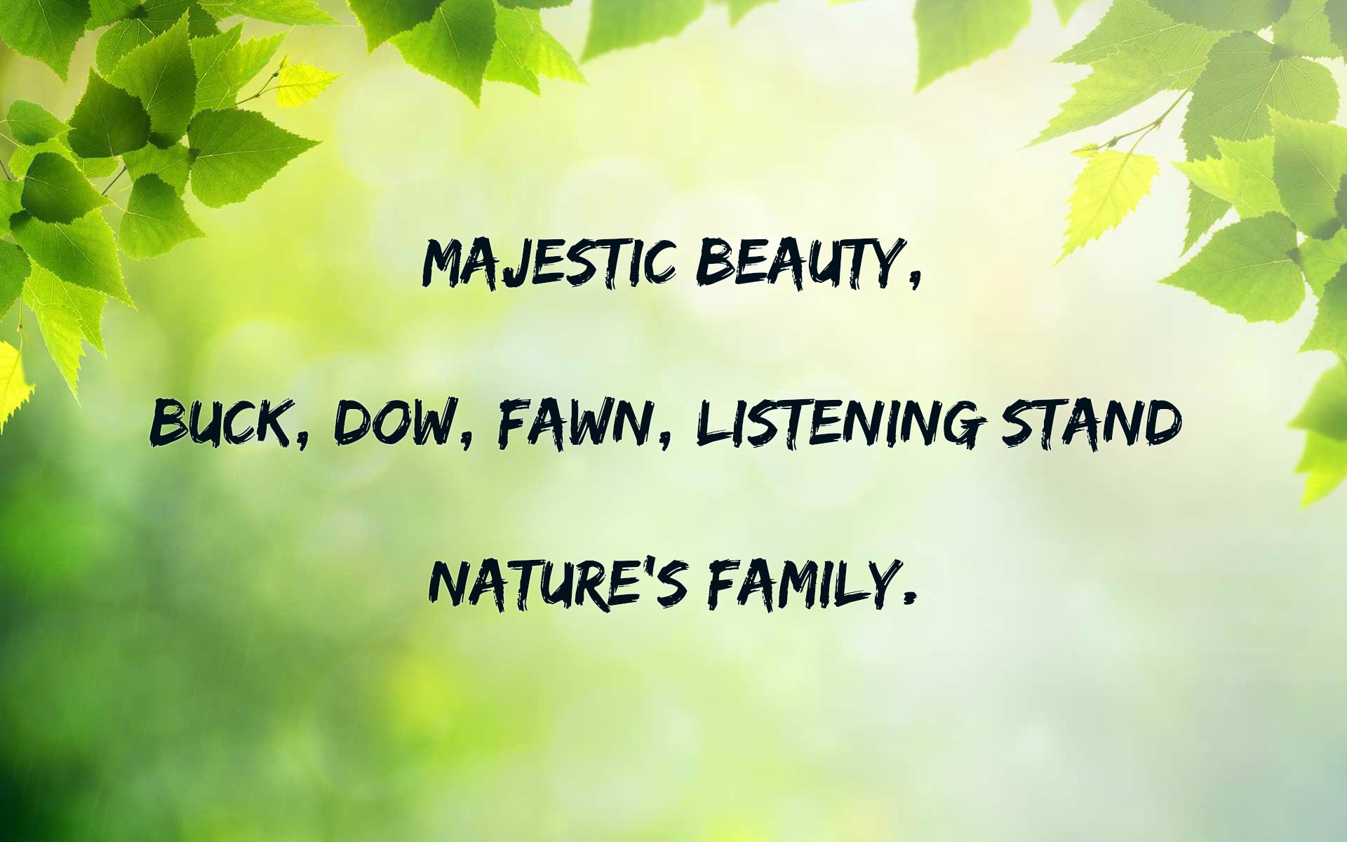 Haiku About Nature