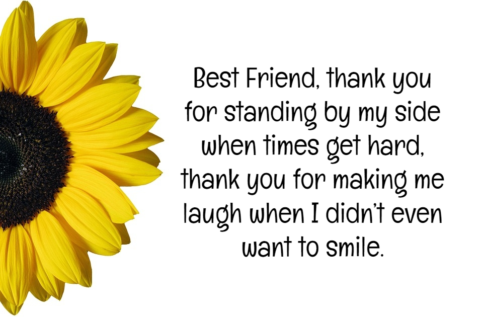 best friends quotes that make you cry quotereel
