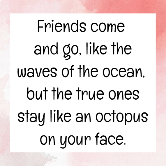 Funny Friendship Quotes 1 Quotereel