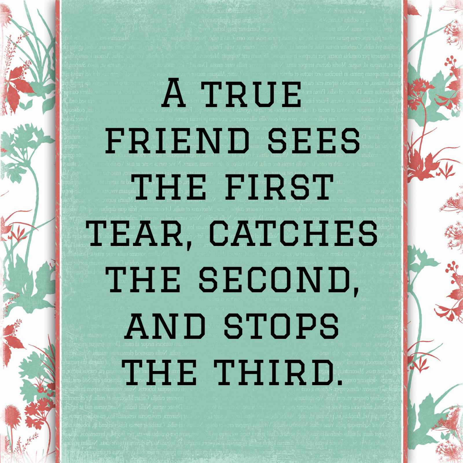 Short Friendship Quotes 5   QuoteReel