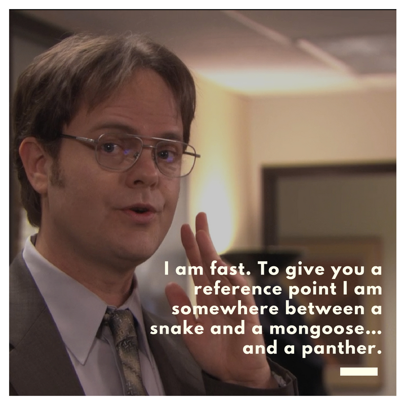 Dwight Schrute Quotes Dwight Schrute Quote 1 | QuoteReel Dwight Schrute Quotes