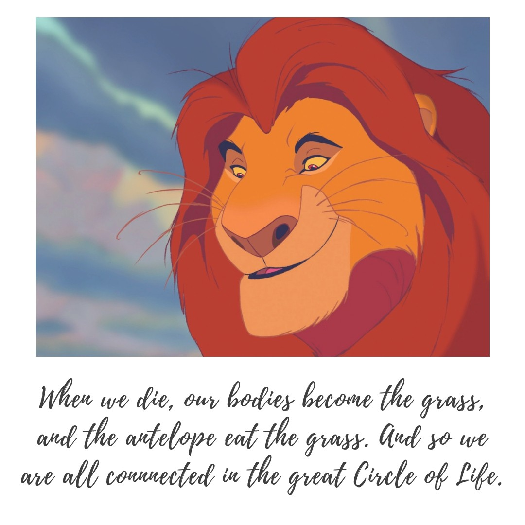 Mufasa Quotes Text Amp Image Quotes Quotereel