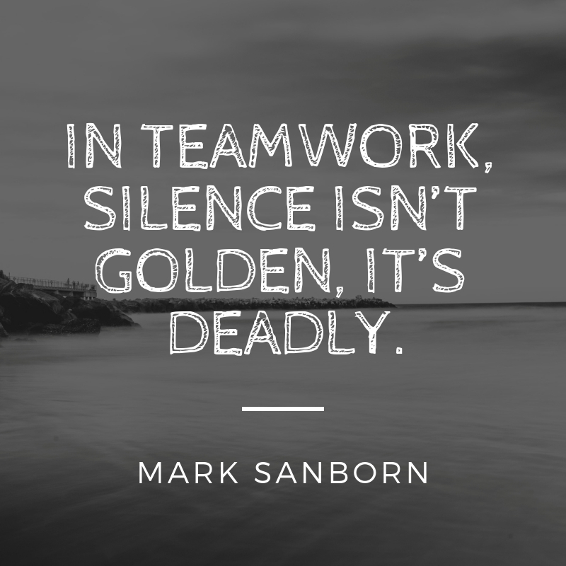 21 Teamwork Quote 14